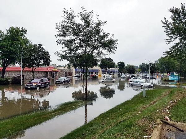 من المسؤول عن تعويض أضرار السيارات بسبب الأمطار والفيضانات